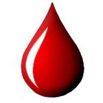 Krv a akú funkciu má krv?