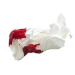 vykasliavanie-krvi